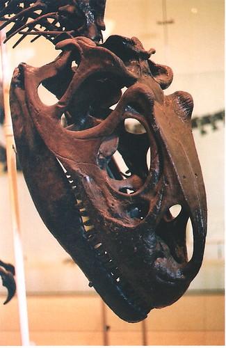 NYCDinosaur