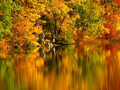 Fisherman's Autumn Paradise (Stanley Zimny) Tags: park autumn trees orange lake color tree fall nature colors leaves yellow automne leaf fishing fisherman colorful colours seasons natural fallcolors vivid loveit autumncolors fourseasons autumnal colorexplosion 4seasons naturesfinest mostfav olympicgold amazingamateur theperfectphotographer top20vivid samosaic mirrorser mfsz