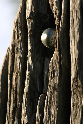 Wood and Metal 1