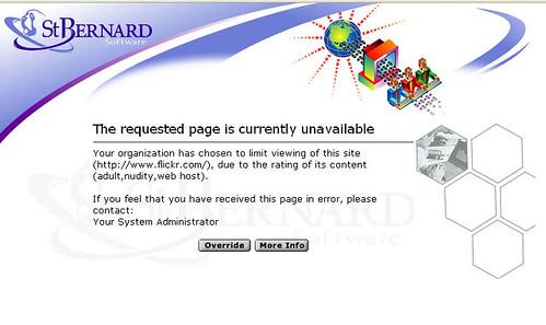4000th image - Flickr Blocked
