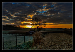 Harvests of mas.... (fatboyke (Luc)) Tags: sunset brussels sky cold belgium soe frosted oogst mas supershot anawesomeshot infinestyle flickrexcellentphotos