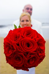 Red Rose Circle (Jacob K. Cunningham) Tags: ca flowers wedding roses portrait usa beach rose santabarbara marriage jacobkcunningham