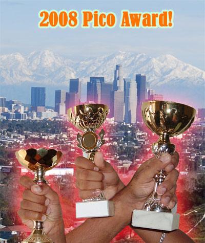 2008 Pico Award
