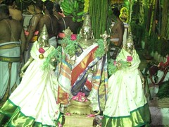 Utsava moorthy - Fresh after the Thirumanjanam