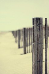 Everything Has a Cage (Erik Holmberg) Tags: wood beach sc fence wire sand bars post dunes south dune southcarolina cage charleston beaches carolina everything has folly drift everythinghasacage