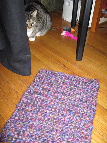 Knit rug for MF