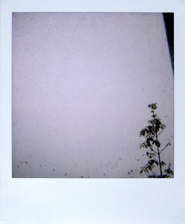 may9: rain