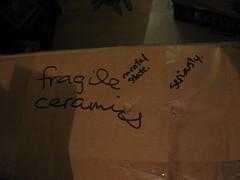 fragile (plumtexan) Tags: moving amy seaanemone