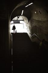 Hades (gato-gato-gato) Tags: 35mm ch contax contaxt2 iso400 ilford ls600 noritsu noritsuls600 schweiz strasse street streetphotographer streetphotography streettogs suisse svizzera switzerland t2 zueri zuerich zurigo z¸rich analog analogphotography believeinfilm film filmisnotdead filmphotography flickr gatogatogato gatogatogatoch homedeveloped pointandshoot streetphoto streetpic tobiasgaulkech wwwgatogatogatoch zürich strase onthestreets mensch person human pedestrian fussgänger fusgänger passant sviss zwitserland isviçre zurich autofocus