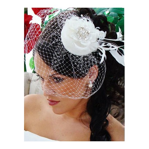 Haute Bride, cage veil, french net veil, fascinator, Love Couture Bridal, Washington DC bridal accessories