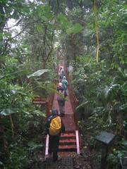 Monteverde - 36