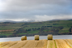 Bales (tanera) Tags: winter snow mountains barley scotland farm shoreline mainland anywhere wwwtaneracouk httptaneracouk