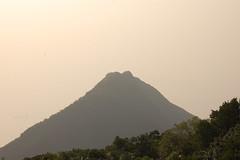 Hongkong novembre 2007 (miiichou) Tags: montagne d50 hongkong view natural ville mgapole