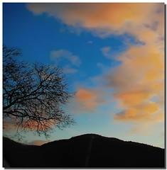 Orange and blu (Nespyxel) Tags: blue sunset tree silhouette clouds arbol tramonto nuvole sonnenuntergang blu branches puestadesol albero arbre baum arancione orande challengeyouwinner nespyxel stefanoscarselli pleasedontusethisimageonwebsites blogsorothermediawithoutmyexplicitpermissionallrightsreserved