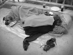 Homeless woman and dog (-Passenger-) Tags: blackandwhite bw woman dog colombia homeless passenger medellin cruzadas