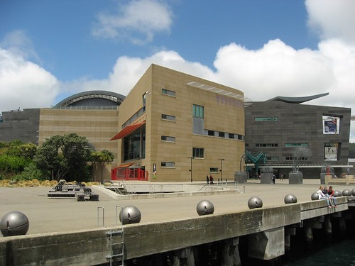 Te Papa museum in Wellington