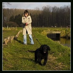 hold on!!! (qletsqop) Tags: dog pull walk tight hold wandeling qletsqop ontstuimig