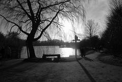 couch de soleil sur le lac du hron (christophe59france) Tags: heron soleil lac paysage nord couche villeneuvedascq noiretbanc bwartaward