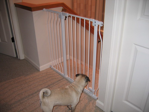 New baby gate