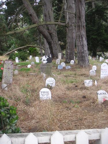 Cementiri de Mascotes