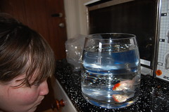Me and a fish with name Julian (gissgiss87) Tags: meg fisk titte