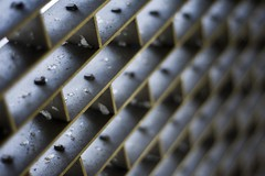 Grate (airencracken) Tags: california may explore 2008 ef50mmf18ii calpoly calpolypomona explored airencracken