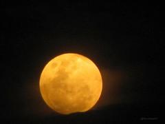 Eclipse penumbral de luna 10 de febrero de 2017