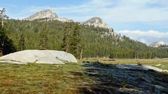 Granite Domes, Tuolumne Meadows, Yosemite 2015 (inkknife_2000 (7.5 million views +)) Tags: easternsierranevada yosemitenationalpark california usa landscapes mountains dgrahamphoto tuolumnemeadows granitedome sprucetrees meadow skyandclouds