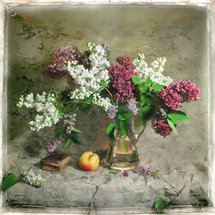 Lilac Season (Arunas S) Tags: stilllife art apple image lilac naturemorte cityart contemporaryartsociety fantasticnature natiurmortas tqp artistictreasurechest magicunicornverybest magicunicornmasterpiece trolledproud bestofshining truthandillusion lilacseason