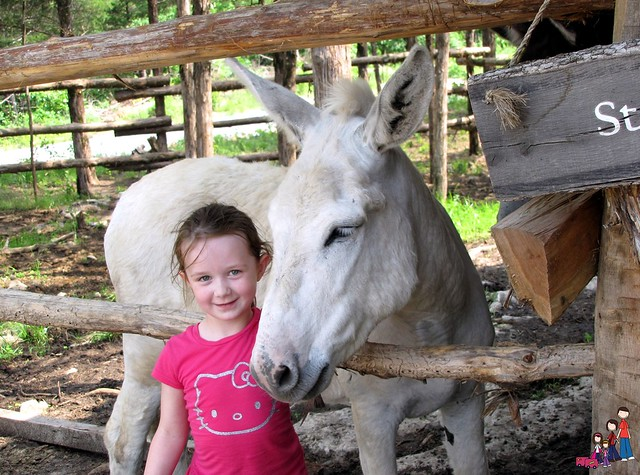 Caelan and her friend the white donkey at Ozark Medieval Fortress