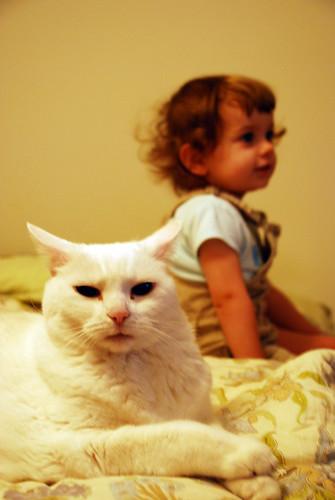catbaby 028