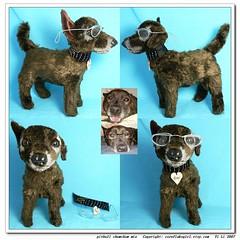 pitbull chowchow mix (cornflakegirl) Tags: portrait dog pet toy stuffed doll plush pitbull custom chowchow cornflakegirl
