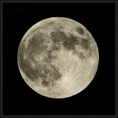 Full moon (xollob58) Tags: germany deutschland halo fullmoon telescope dslr darmstadt celestron vollmond photoshopelements teleskop naturesfinest splendiferous celestronnexstar4gt
