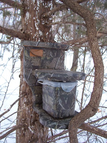 Camo Commode........ (how many, picture, pictures, sleeping ...