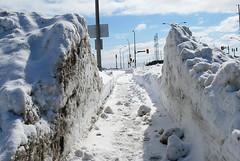 200803_12_02 - Sidewalk in a Snowbank