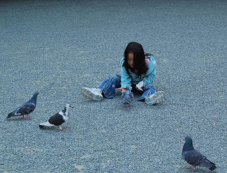 _girl&pigeons_