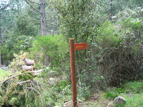 Les bergeries de Naseu : sentier de descente à San Gavinu