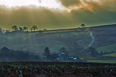Sunrise over Castleton. (paul downing) Tags: pauldowning pd1001 pauldowningphotography nikon d7200 sunrise castleton northyorkshiremoors road tree hitech gnd 12 filters