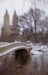 Snowy Day in Central Park (rjdibella) Tags: newyorkcity bowbridge newyork 2017 centralpark manhattan usa snow nyc park parks unitedstates us