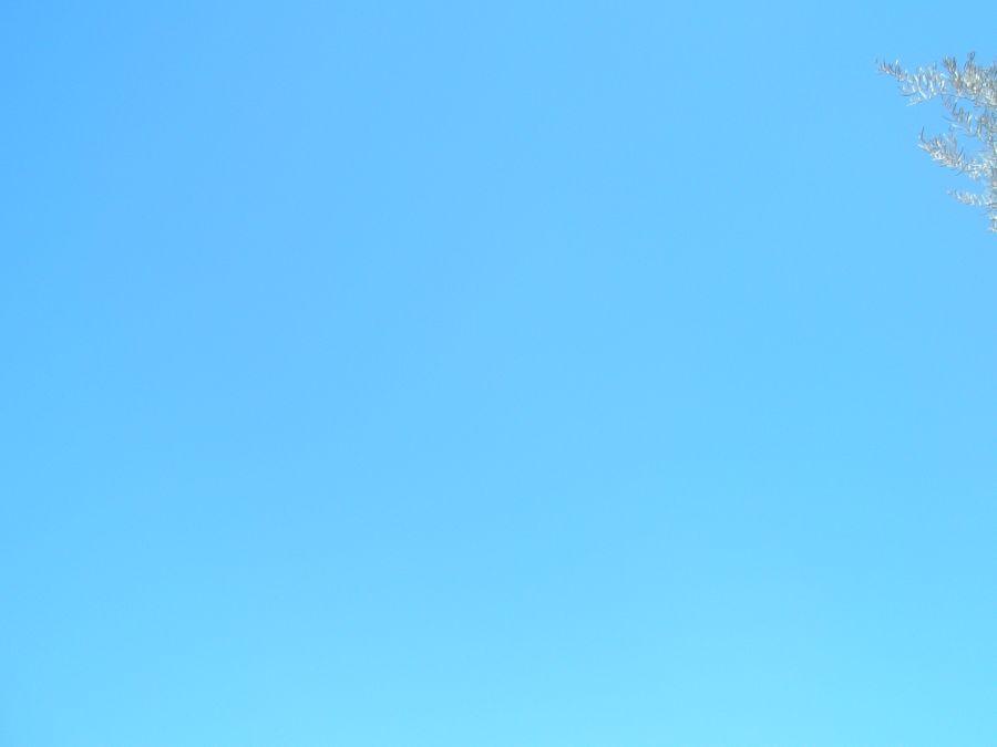 Welches Image hat PURE BLUE?   Bewertungen, Nachrichten ...