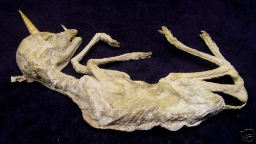 Mummified Unicorn