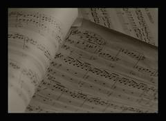 Bach Again por JHK images