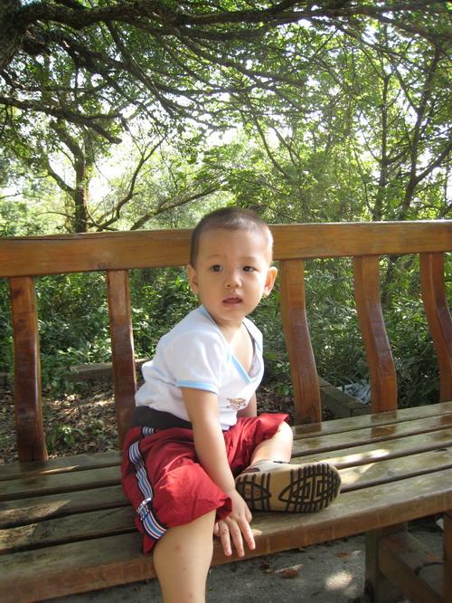 20071117劍南路蝴蝶步道