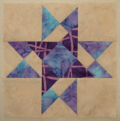 "9"" Star Block for Diane"
