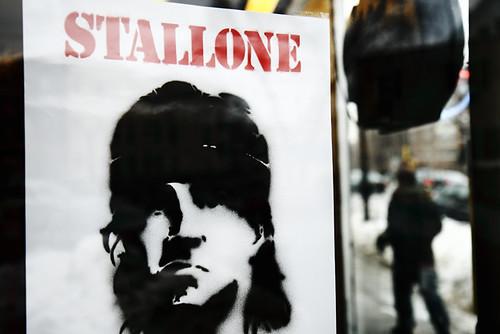 STALLONE 5161