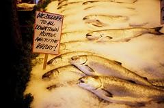 fish delivery (Viv | Seattle Bon Vivant) Tags: seattle film analog washington farmersmarket rangefinder ishootfilm pikeplacemarket filmcamera expired analogphotography f28 nopostprocessing olympusxa downtownseattle 60minutephoto vintagefilmcamera fujichromeprovia1600professional