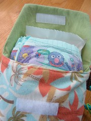 travel diaper + wipes carrier :: inside lined in green flannel