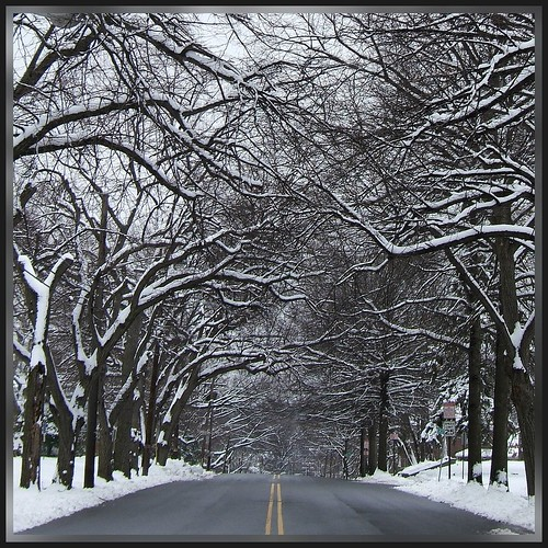 Winter Street Scene: Park Ave, Paterson NJ
