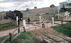 Marburg branch (Leonard John Matthews) Tags: train engine railway australia steam queensland locomotive passenger c17 narrowgauge levelcrossing bestofaustralia birru mythoto marburgbranch tenderfirst