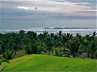 Ecuador-beach-property-for-sale-backyard-view